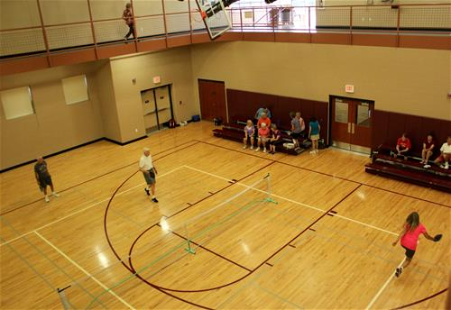 pickle ball from above